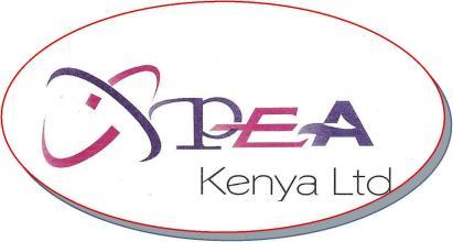 Peakenya logo